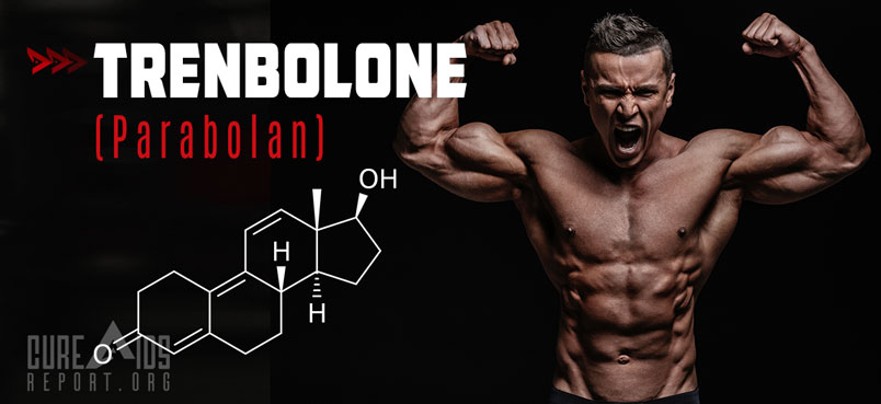 What is Trenbolone More Commonly Known As?