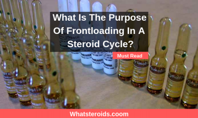 What Is The Purpose Of Frontloading In A Steroid Cycle?