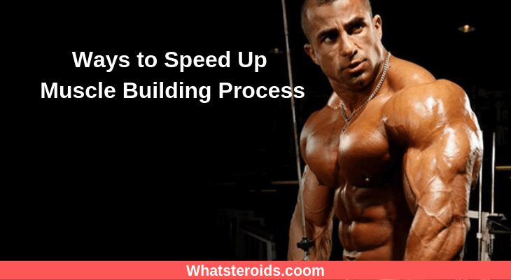 Ways to Speed Up Muscle Building Process