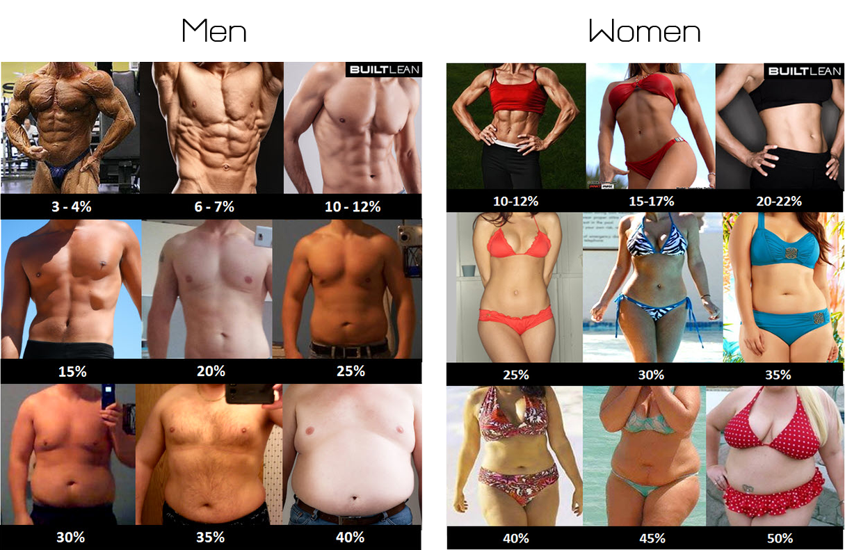 Body Fat For Men And Women 114