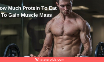 How Much Protein To Eat To Gain Muscle Mass