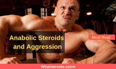 Anabolic Steroids and Aggression