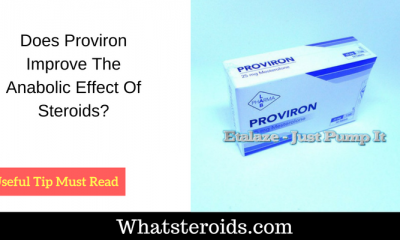 Does Proviron Improve The Anabolic Effect Of Steroids?