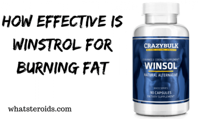 How Effective Is Winstrol For Burning Fat