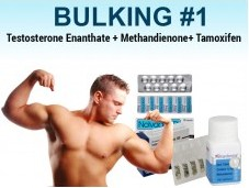 Steroid Cycle #1