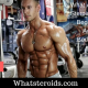 What Are The Best Steroids Cycles for Beginners and Advanced Bodybuilders?
