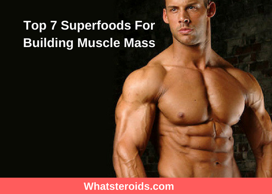 Top 7 Superfoods For Building Muscle Mass