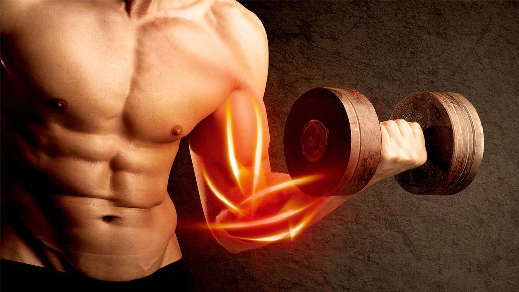 Build Huge Muscle Using Synthetic HGH