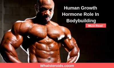 Human Growth Hormone Role In Bodybuilding