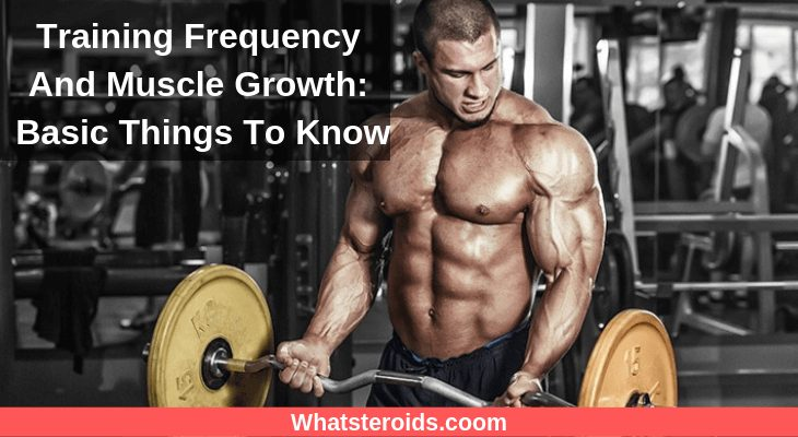 Training Frequency And Muscle Growth: Basic Things To Know