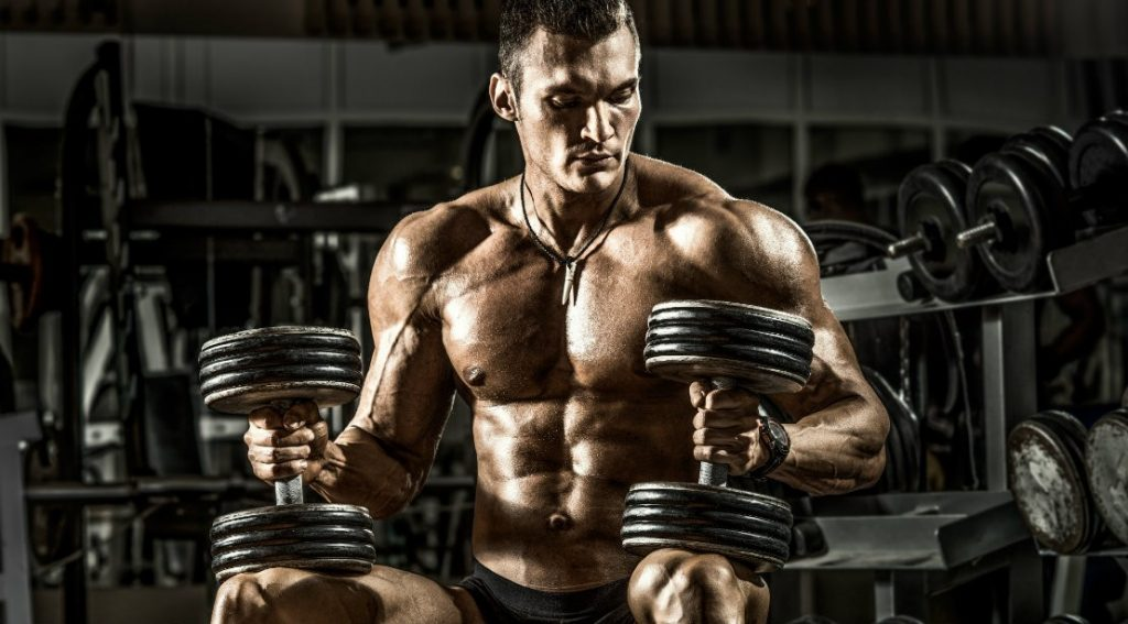 Upper Body Free Weight Workout Routine