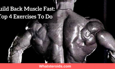Build Back Muscle Fast: Top 4 Exercises To Do
