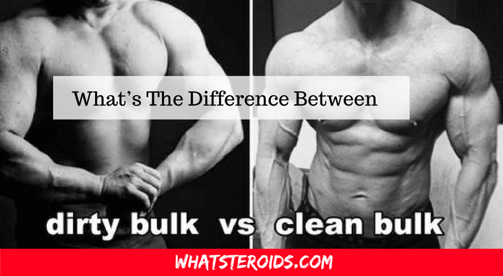 "What's The Difference Between ""Clean Bulk"" And ""Dirty Bulk"" Diet When Taking Steroids?"