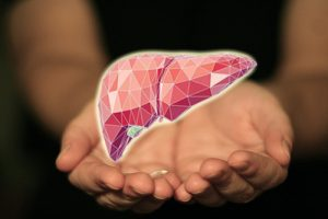 Products That Help Keep Liver Health While on Steroids
