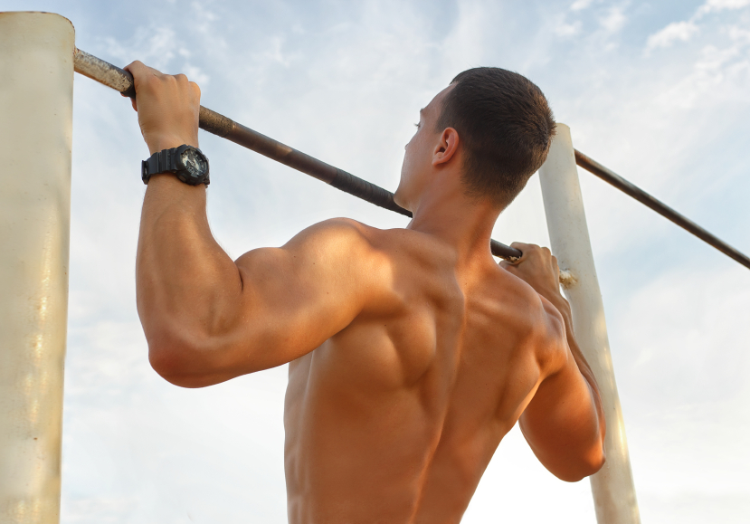 Pull Ups & Chin-Ups Exercises