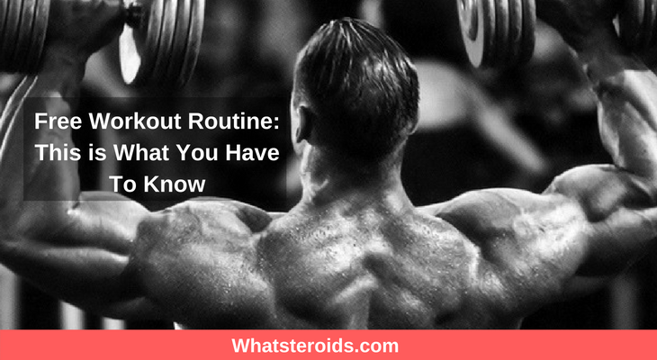 Free Workout Routine: This is What You Have To Know