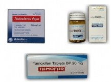 Cheapest and Safest Steroids