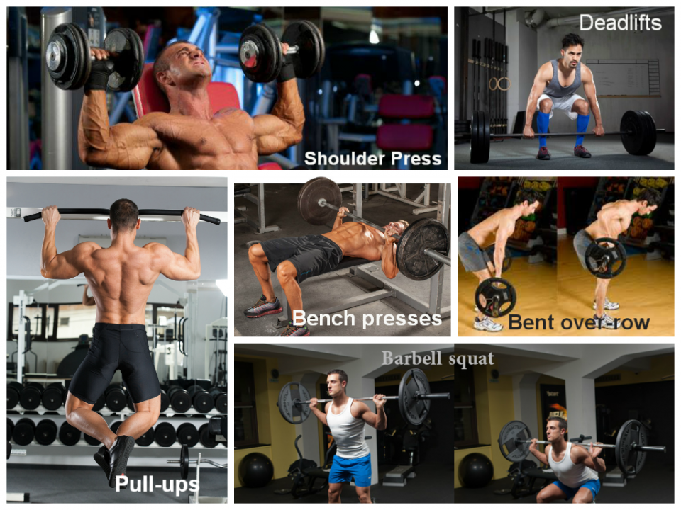 Basic exercises for building muscle
