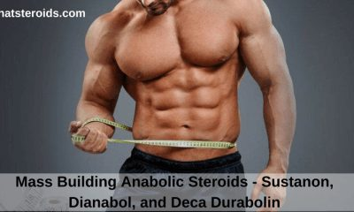 Mass Building Anabolic Steroids - Sustanon, Dianabol, and Deca Durabolin