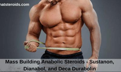 Mass Building Anabolic Steroids - Sustanon, Dianabol, and Deca Durabolin
