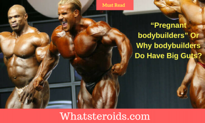 """Pregnant bodybuilders"" Or Why bodybuilders Do Have Big Guts?"