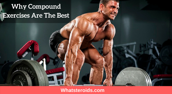 Why Compound Exercises Are The Best