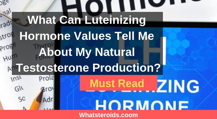 What Can Luteinizing Hormone Values Tell Me About My Natural Testosterone Production?