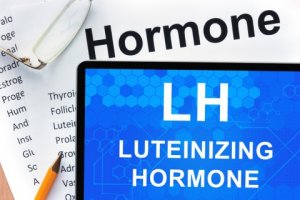 How Does Luteinizing Hormone (LH) Work?