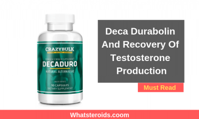 Deca Durabolin And Recovery Of Testosterone Production