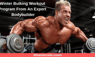 Winter Bulking Workout Program From An Expert Bodybuilder