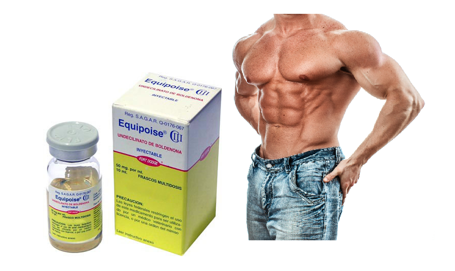 equipoise cycle benefits
