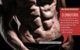 Clenbuterol Fat Loss Agent when cutting