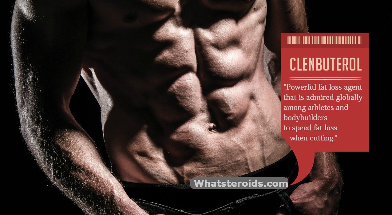 Clenbuterol: The Fat Burning Machine – WhatSteroids