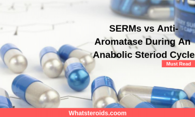 SERMs vs Anti-Aromatase During An Anabolic Steriod Cycle
