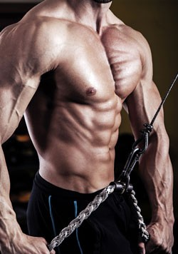 Short steroid cycles are effective for bulking and cutting as well.