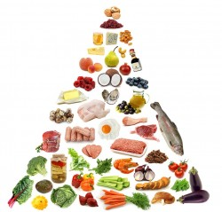 muscle building food pyramid