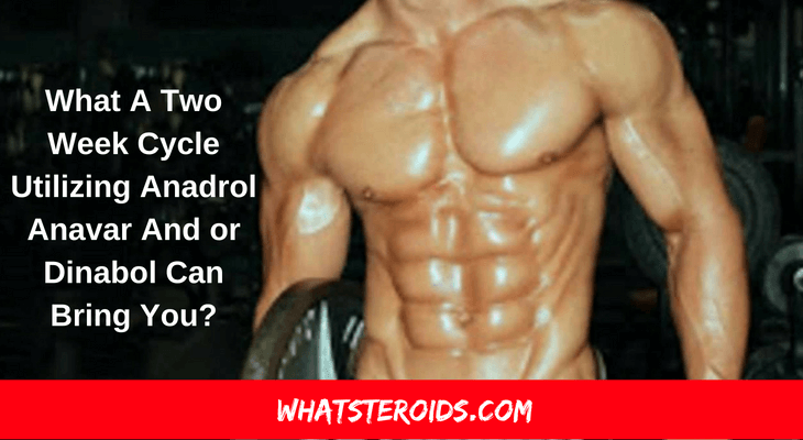what a two week cycle utilizing anadrol anavar dinabol can bring you