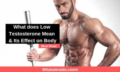 What does Low Testosterone Mean & Its Effect on Body