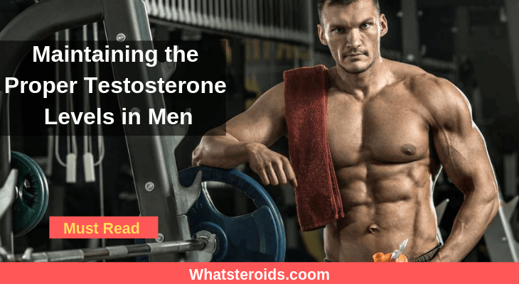 Maintaining the Proper Testosterone Levels in Men