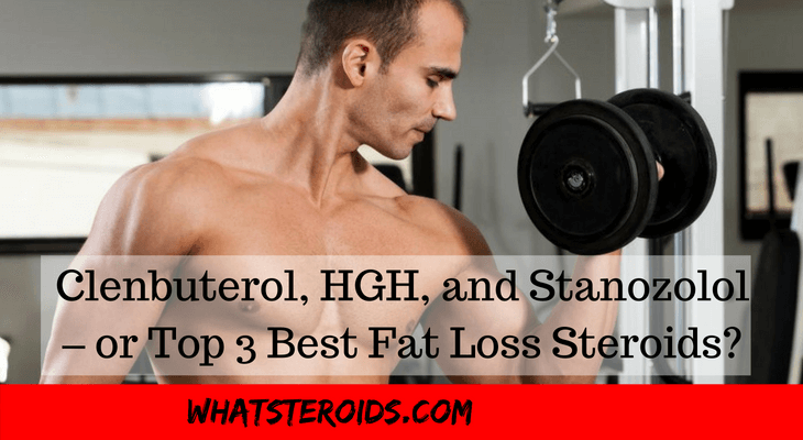 Clenbuterol, HGH, and Stanozolol – or Top 3 Best Fat Loss Steroids?