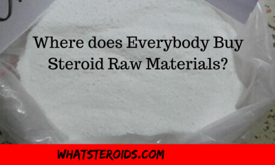 Where does Everybody Buy their Steroid Raw Materials?