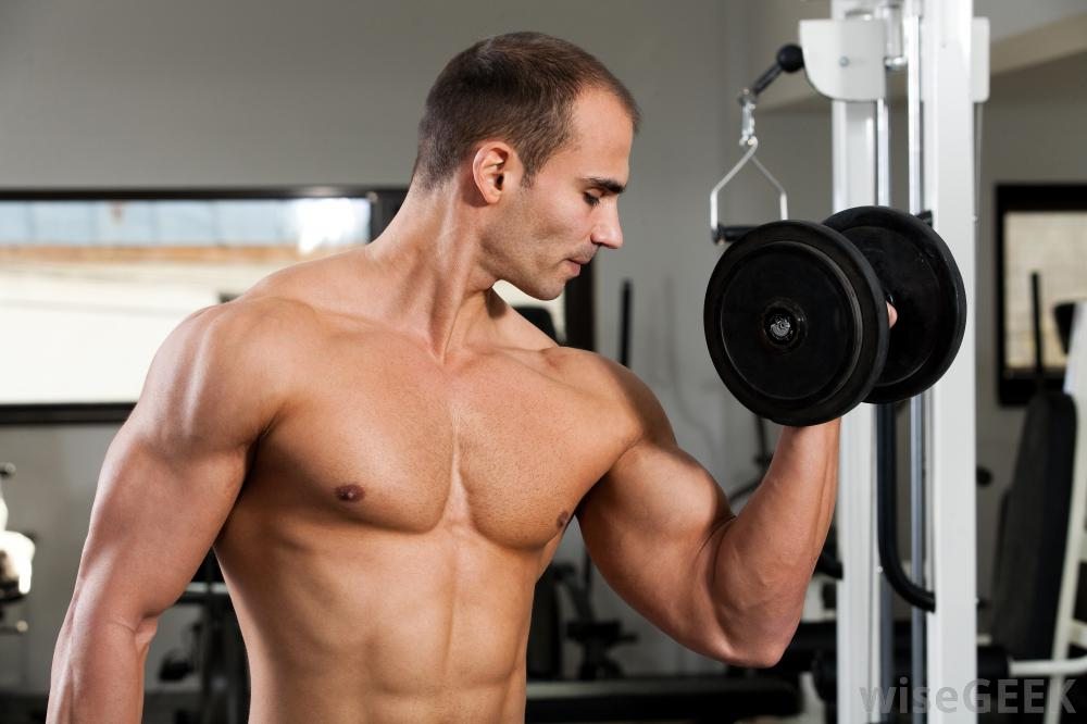 Image result for Best Results in Comparison of Stanozolol versus Clenbuterol Effects