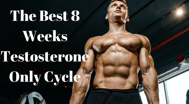 The Best 8 Weeks Testosterone Only Cycle