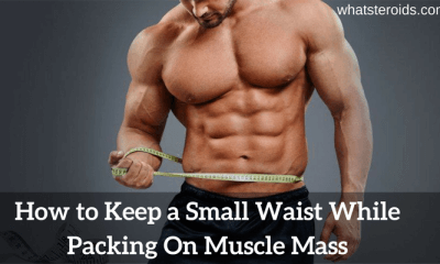 How to Keep a Small Waist While Packing On Muscle Mass