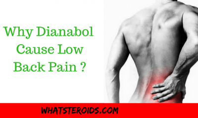 Why Dianabol May Cause Low Back Pain and What You Can Do?