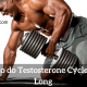 3 Ways to do Testosterone Cycle all Year Long