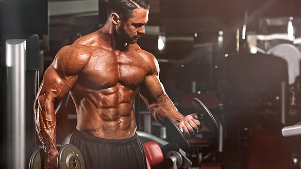 Steroids Reduce Body Fat Weightlifting
