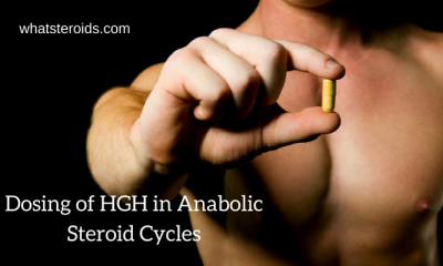 Dosing of HGH in Anabolic Steroid Cycles