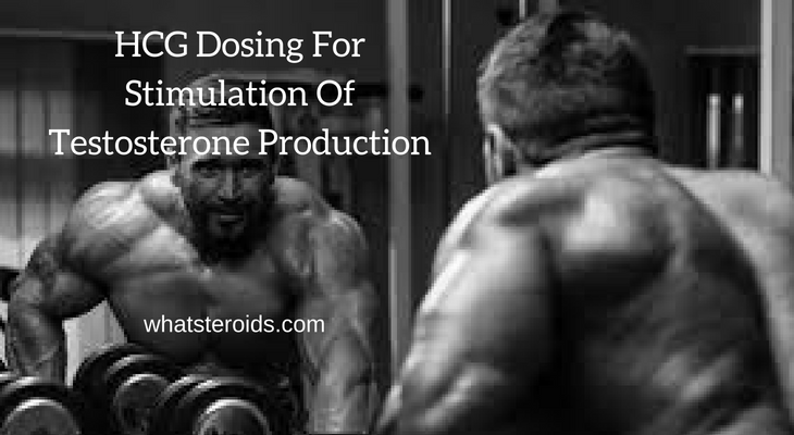 HCG Dosing For Stimulation Of Testosterone Production