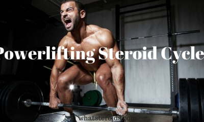 Powerlifting Steroid Cycles